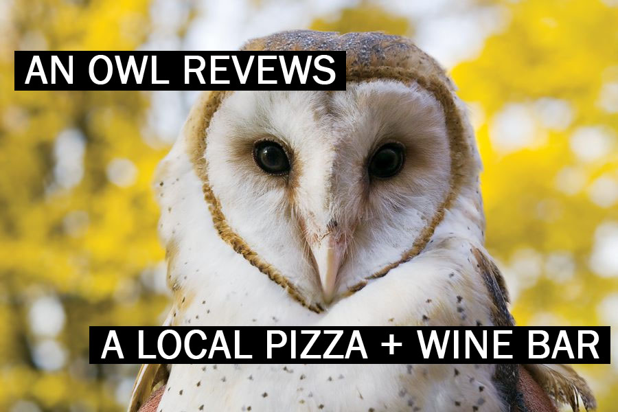 an Owl Reviews A Local Pizza + Wine Bar
