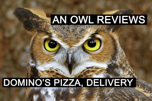 owlreviewpizza2
